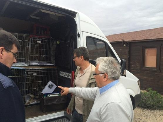 Nuevo hogar para 11 perros que emigran hacia Alemania