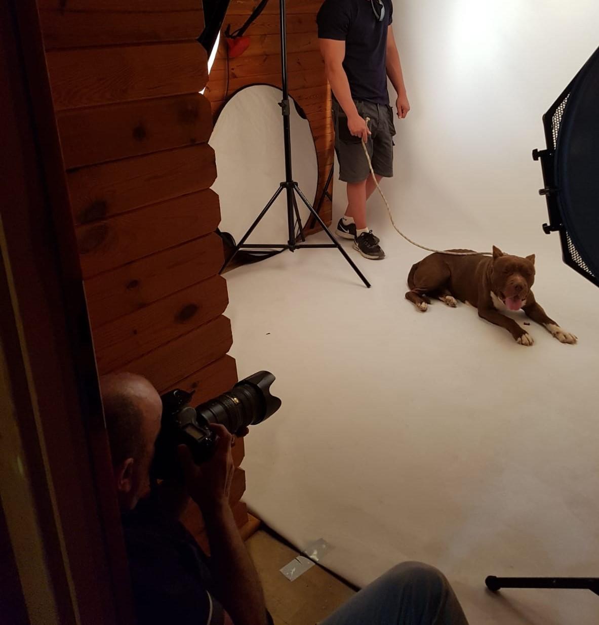 Nuestros canes posan con su mejor sonrisa!