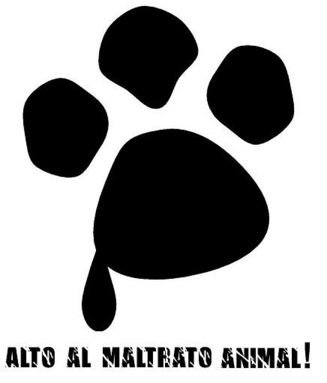 El Ayuntamiento de Ceutí contra el maltrato animal