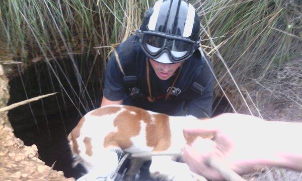 Rescatan a un perro que había caído a un pozo seco