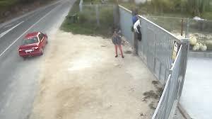 Abandonan a su perro lanzándolo a una protectora en Pontevedra